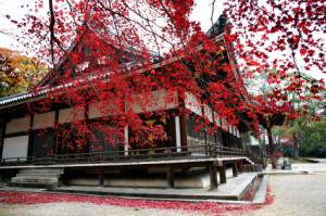 fall-temple